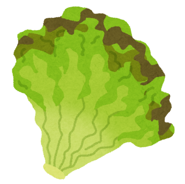 36vegetable_sunny_lettuce.png